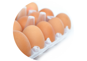 Eggs - Made in Argentina